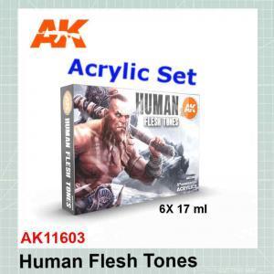 Human Flesh Tones Set AK11603